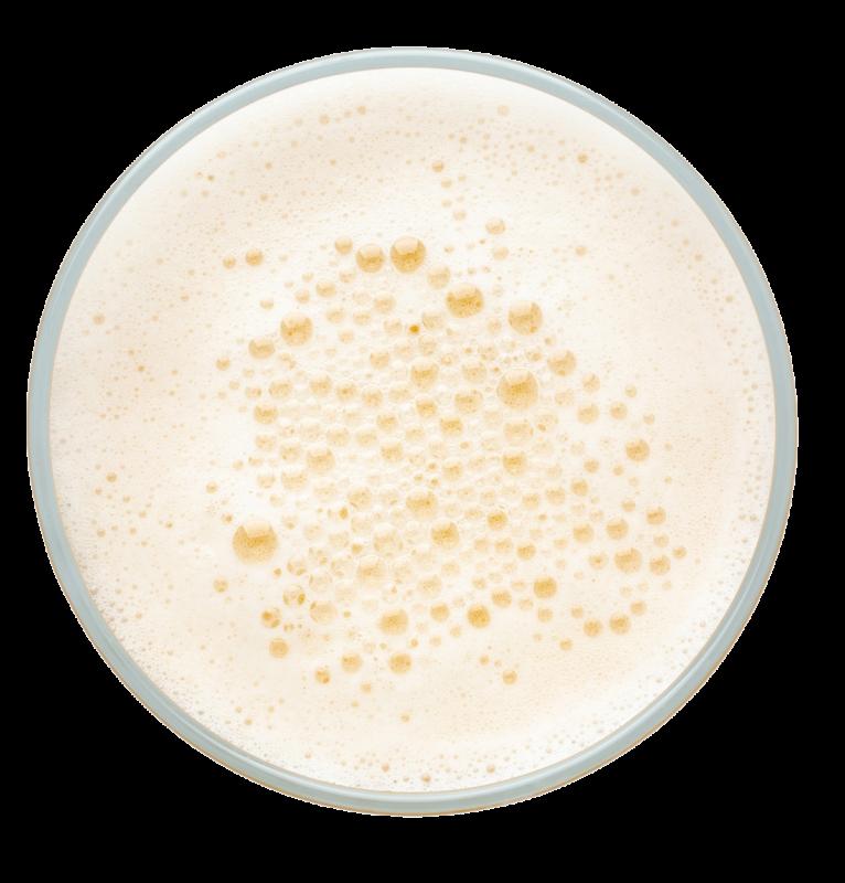 Brews and Brands Craft Beer